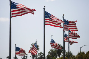 American flags wave in the wind in Los Angeles. Photo by John Schreiber.