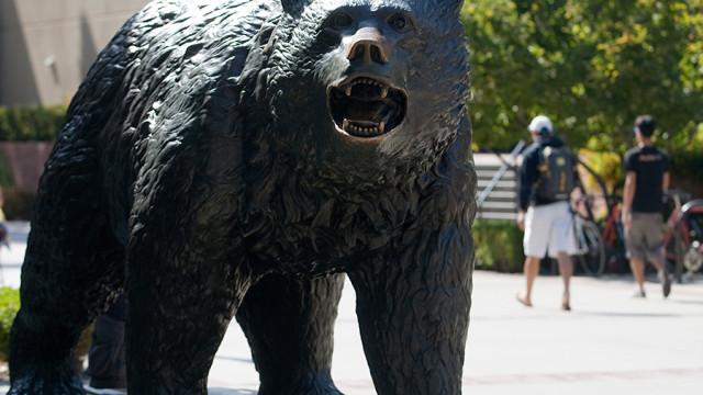 UCLA Bruin