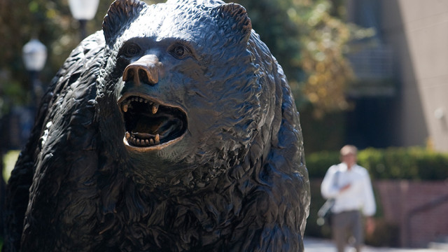 The UCLA bruin statue on the campus of UCLA. Photo by John Schreiber.
