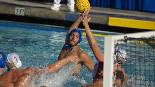 UCLA men's water polo game. Courtesy UCLA Athletics