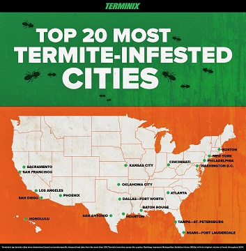 Top 20 Most Termite-Infested Cities