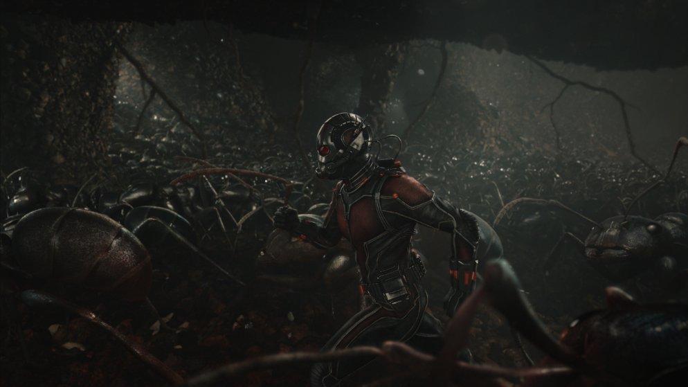 Still of Paul Rudd in 'Ant-Man.' Photo courtesy of Marvel/Disney