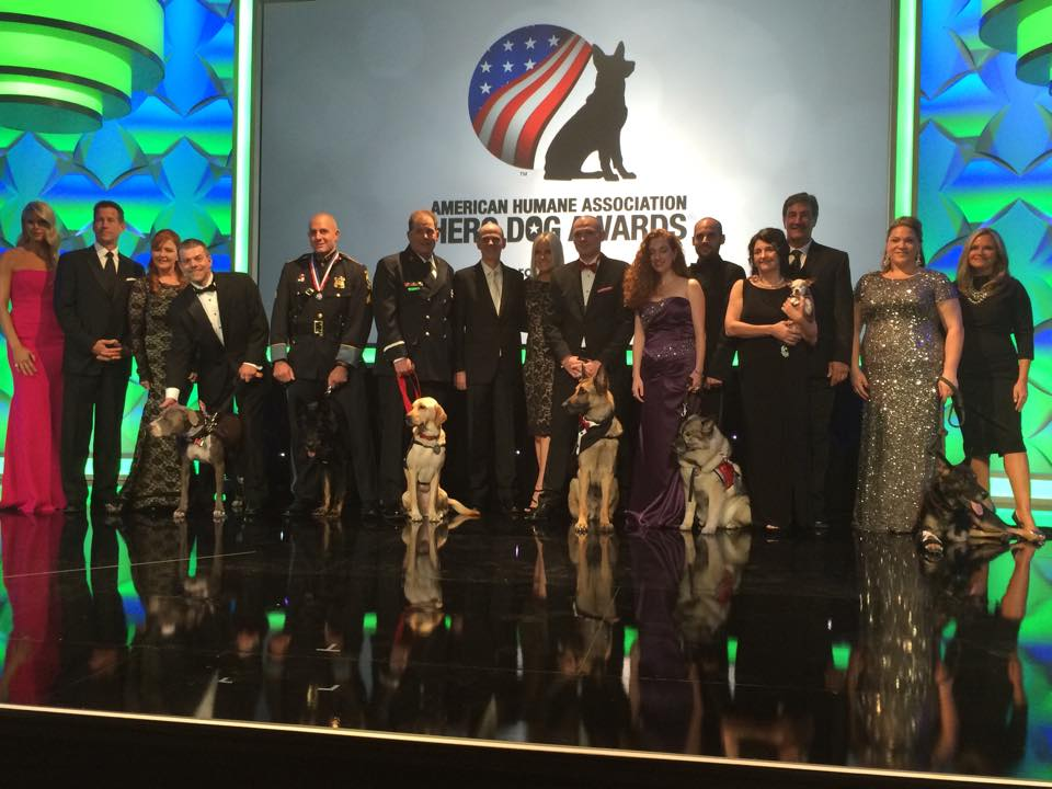 The finalists for the Hero Dog Awards and their handlers. Photo courtesy of the American Humane Society