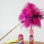 feather duster and cleaning supplies