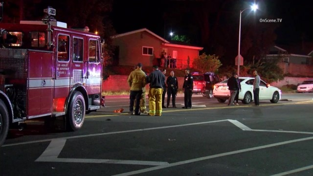 A 31-year-old woman and her 69-year-old mother, along with their black Labrador, were struck and killed by a SUV in a tragic accident in West Hills, but the driver stopped at the scene, authorities said. Photo via OnScene.TV.