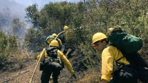 A U.S. Forest Service crew moves a hose into position on the fire line. Courtesy U.S. Forest Service
