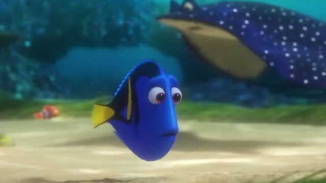 """Photo via """"Finding Dory"""" official trailer."""