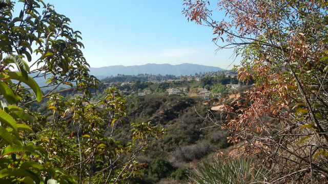 A view from the Altadena Crest Trail. Courtesy Los Angles County