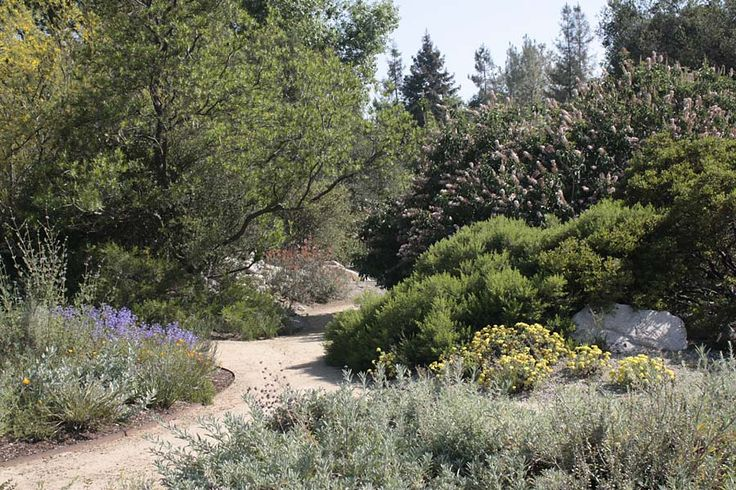 Genial Rancho Santa Ana Botanic Garden In Claremont. File Photo: Pinterest
