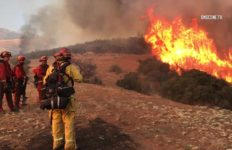 Banning brush fire