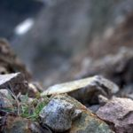 Small rocks in a mountainous area.