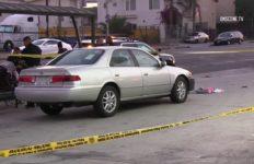 South LA shooting