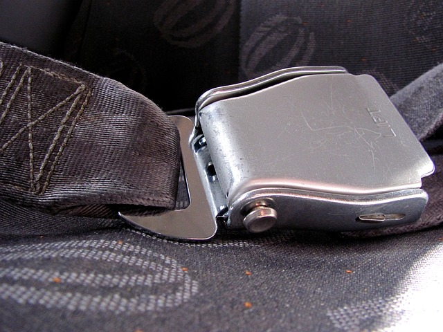 A vehicle's seatbelt closeup.