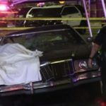 South LA fatal H&R
