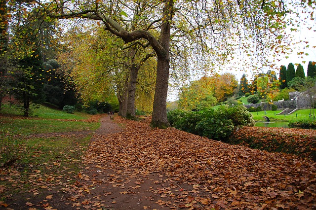 An example of a public park in autumn. Photo from Pixabay.