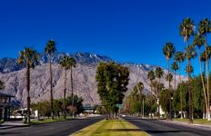 A view of a Palm Springs street, trees and mountains. Photo from Pixabay.