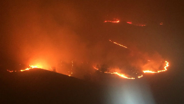 Wildfire burns homes, Rupert Murdoch's winery in LA's posh Bel-Air area