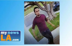 Police Thursday released an image of a suspect who snatched a package from the front of a Santa Clarita home. Photo from Los Angeles County sheriffs Department.