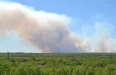 An example of smoke rising from a brush fire. Photo from Pixabay.