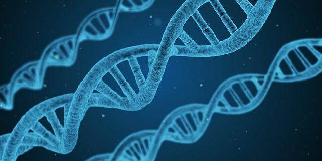DNA illustratiion from Pixabay.