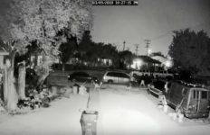 Warning: Graphic Images In this video released by the Los Angeles Police Department a gunman shoots and kills a dog barking from inside a fenced yard in South Los Angeles. Police are asking for the public's help, including anonymous tips, to identify the killer. Photo/video from the Los Angeles Police Department.