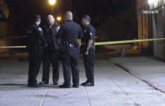 Police at scene of fatal hit-and-run