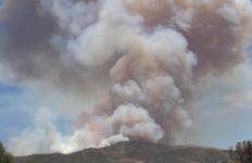 Agua Dulce brush fire