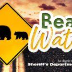 Sheriff's bear watch logo