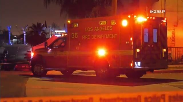 San Pedro homicide