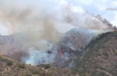Burbank brush fire