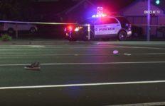 Scene of pedestrian fatality