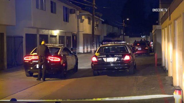 Anaheim police cruisers