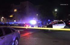 OCDA Finds No Criminal Wrongdoing in Anaheim OIS - MyNewsLA com