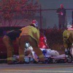 Paramedics assist injured pedestrian