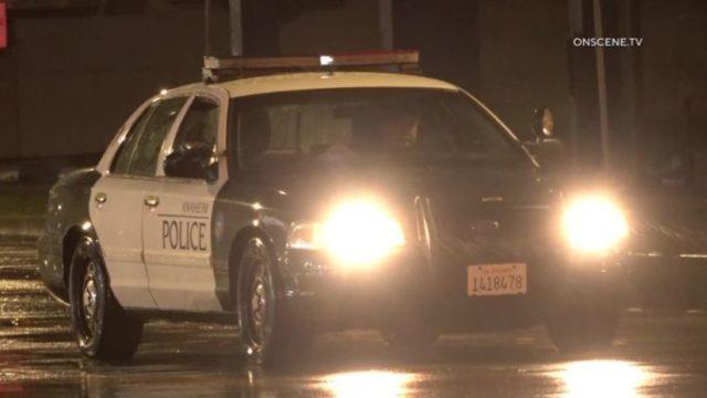 Police cruiser in rain