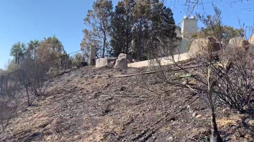 Charred hillside near home