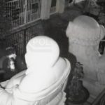 Surveillance video image
